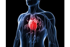 Protecting Your Heart While on Testosterone Therapy