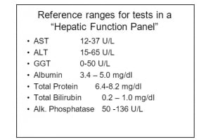 The Importance of The Liver Test Panel and Why You Should Get It